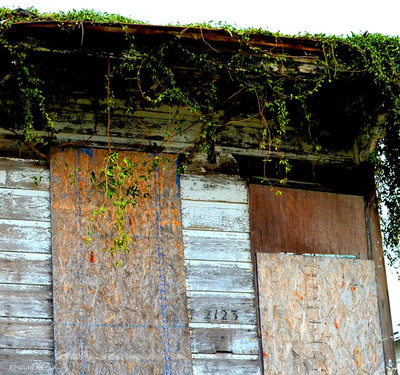 Nola-buildingweb