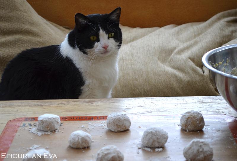 Taj--cookies