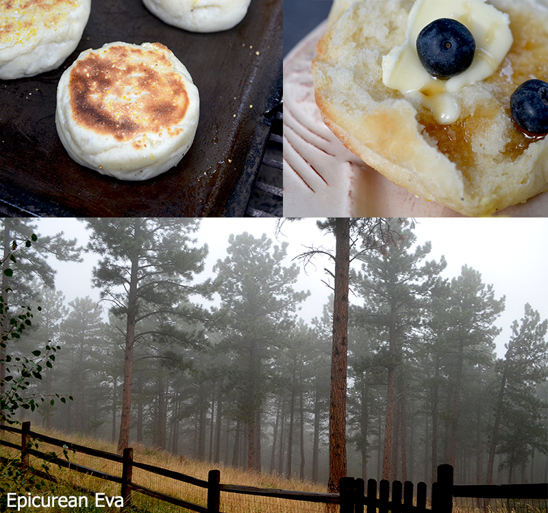 english-muffin-collageweb