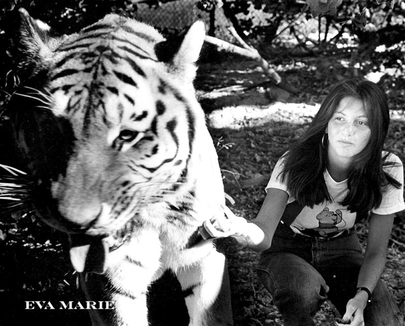 Eva-and-Tiger-WEB