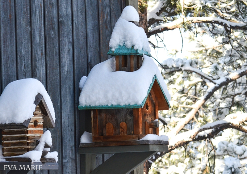 snowy birdhousessm