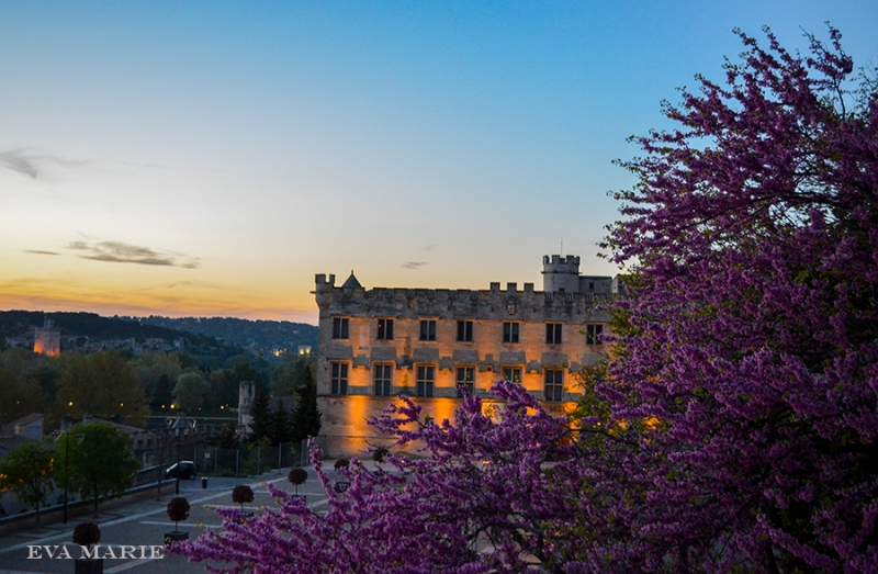 Avignon-at-sunsetweb
